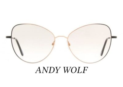 Vision In Focus - Andy Wolf - 4740_D