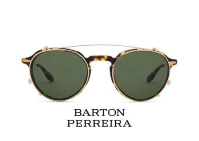 Vision In Focus - Barton Perreira