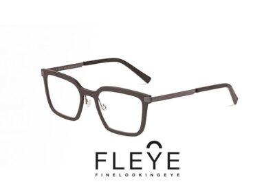 Vision In Focus - Fleye